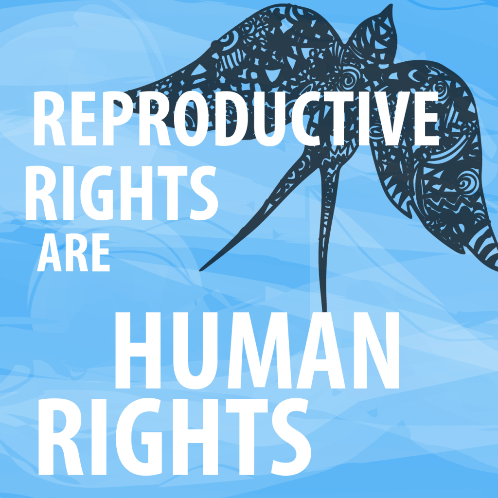 Reproductive Rights are Human Rights - Image credit: Secular Pro-Life Perspective